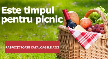 Este timpul pentru picnic