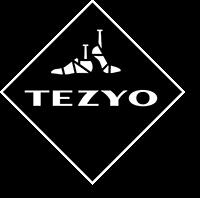 Teyzo